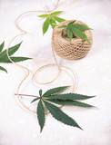 Detail of hemp fiber twine and cannabis leaves over white