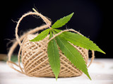 Detail of hemp fiber twine and cannabis leaf