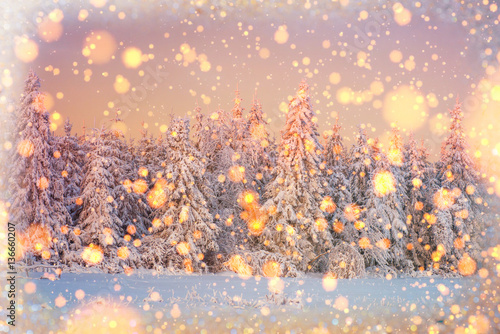Foto op Canvas Wit winter landscape trees snowbound, bokeh background with snowflak