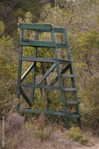 Poster Tour d'observation en forêt