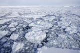 Banquise / Antarctique
