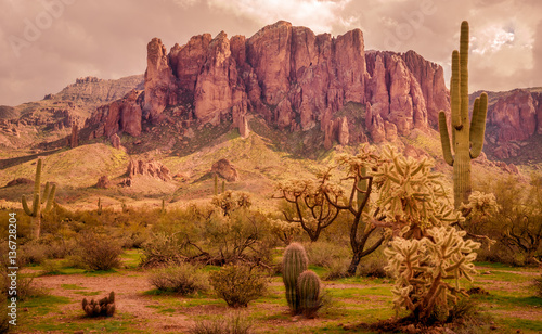 Fotobehang Arizona Arizona desert landscape, Superstition Mountains