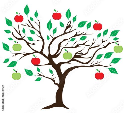 vector apple tree - 136737429