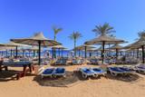 Beach in Sharm El Sheikh - 136742256