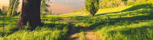 Beautiful summer landscape showing road through countryside nature on sunny spring day