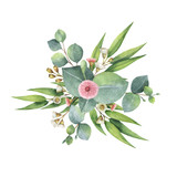 Fototapety Watercolor bouquet with green eucalyptus leaves and branches.