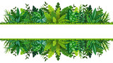 Illustration of a tropical rainforest banner - 136893036