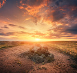 Summer landscape at sunset. Big stones, green and yellow grass against cloudy sky with sunlight. Travel and nature background. Rocks in the beautiful steppe. Colorful evening. Park
