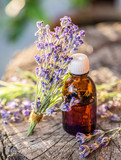 Bunch of lavandula or lavender flowers and oil bottle are on the