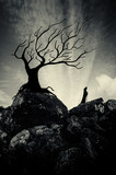 Mystical dark landscape. Old tree silhouette and mysterious cloaked figure on cliffs in surreal scenery