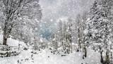paesaggio invernale con fiocchi di neve