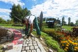 Handwerker verlegt Pflastersteine in einer Gartenanlage  - 136966453