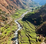 Beautiful terraced rice field in valley around river