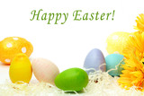 Colorful Easter eggs and yellow flowers on white background
