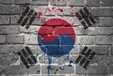 painted national flag of south korea on a brick wall