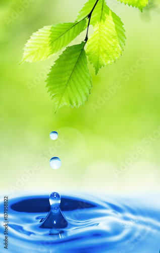 kropla-wody-na-lisciu