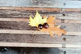 Castagne in autunno