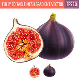 Figs on white background. Vector illustration