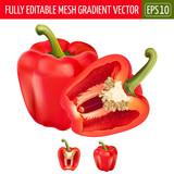 Red pepper on white background. Vector illustration