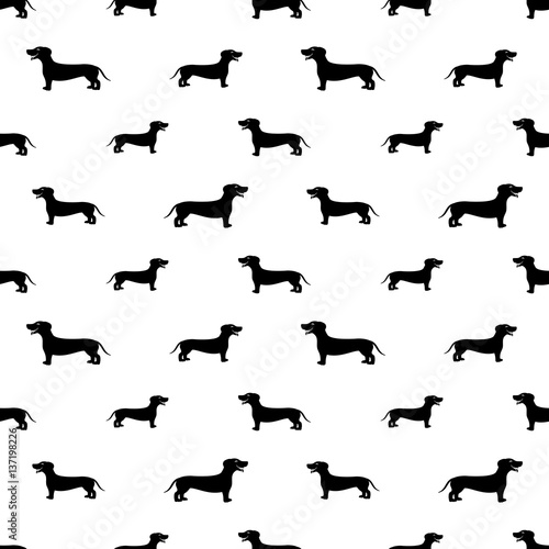 Dachshund dog seamless background. - 137198226