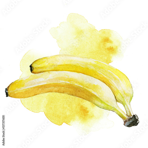 Hand painted watercolor bananas illustration with yellow artistic stains in the background - 137317600
