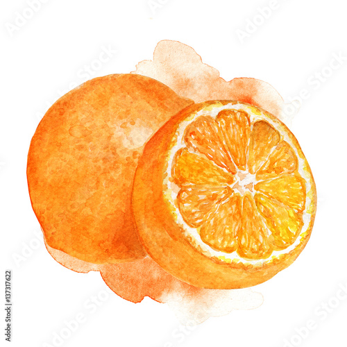 Hand painted watercolor illustration of orange cut in half with artistic stain background
