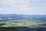 Krajobraz gór stołowych, w tle plantacja rzepaku