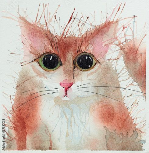 Watercolour cats.
