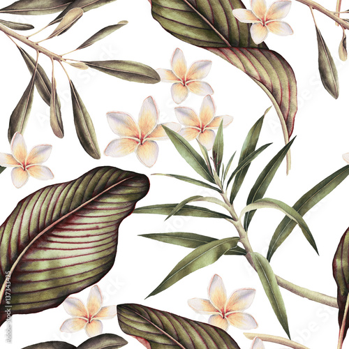 Seamless tropical flower pattern, watercolor. - 137343425