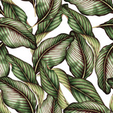 Seamless floral pattern with tropical leaves, watercolor. - 137343820