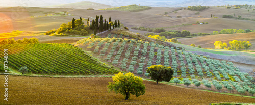 Papiers peints Toscane Tuscan autumn landscape in the light of the rising sun