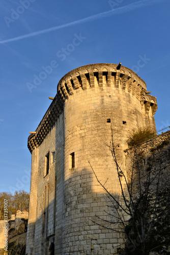 Poster tour d'un château de la Loire