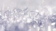 Zooming in on real snowflakes and hoar frost during daylight
