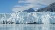 Lamplough glacier in glacier bay, Alska
