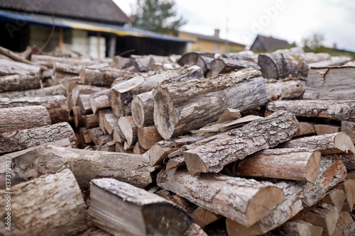 stack of firewood on farm at country Poster
