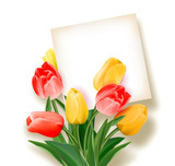Bouquet of tulips with a card inside. Space for text. Holiday background with sheet of paper and flowers. Vector illustration.