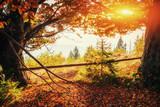 mountain range in the Carpathian Mountains in the autumn season.