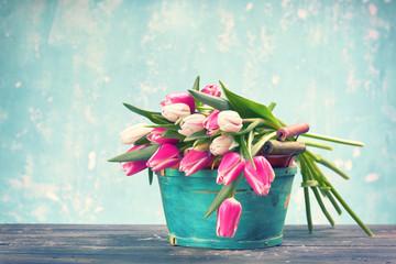 Frühling - frische Tulpen