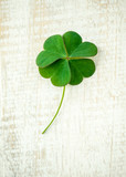 Clover leaves on shabby wooden background. The symbolic of Four Leaf Clover the first is for faith, the second is for hope, the third is for love, and the fourth is for luck. - 137498684