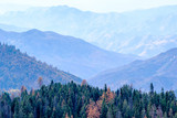 Sequoia National Park mountain landscape at autumn