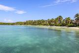 отдых; причал; дерево; море; карибы; пейзаж; небо; бирюза; синий; отпуск;