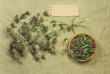 Tansy. Dried herbs. Herbal medicine, phytotherapy medicinal herbs.