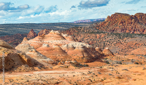 Tuinposter Canyon The Wave, Navajo Sandstone, Arizona