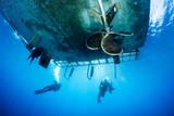 Scuba Divers under dive boat - 137526039