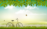 Spring nature meadow landscape with a bicycle. Vector.