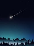 deep pine forest landscape when midnight