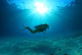 Silhouette of scuba diver - 137563294