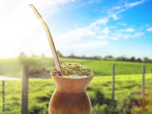 Chimarrão, traditional mate hot tea Poster