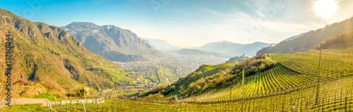 Keuken foto achterwand Panoramafoto s Bozen Talblick Panorama