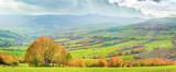 Autumn mountain panorama